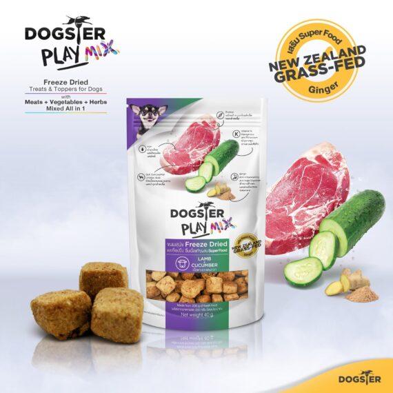 Dogster PlayMIX สูตรเนื้อแกะและแตงกวา (Lamb + Cucumber) 40g.