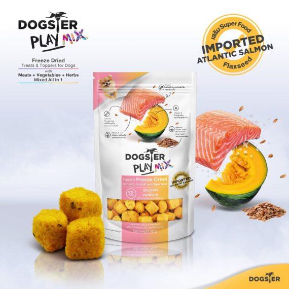 Dogster PlayMIX สูตรเนื้อปลาแซลมอนและฟักทอง (Salmon + Pumpkin) 40g.