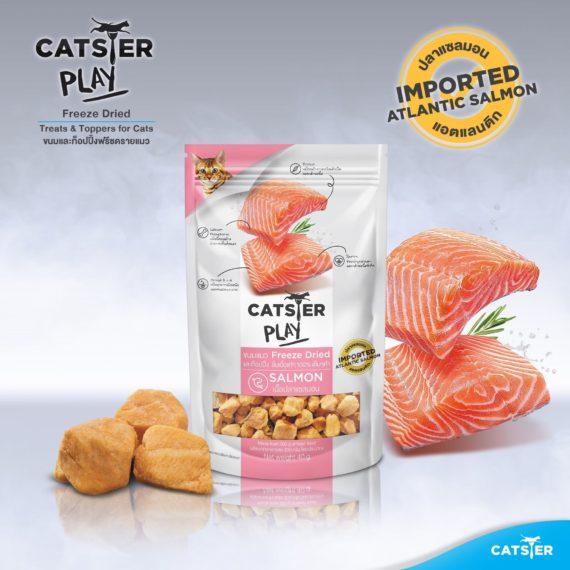 Catster play สูตรเนื้อปลาแซลมอน  (Salmon) 40g.